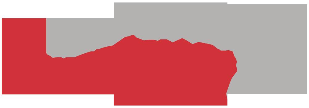 p24 logo